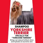 Yorkshire Terrier Shampoo - Yorkshire Terrier and long coat